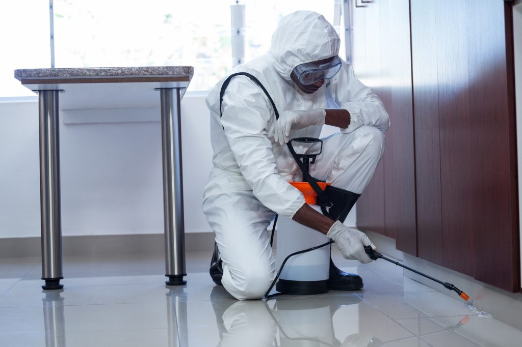 Top Commercial Pest Control Service in Ghaziabad